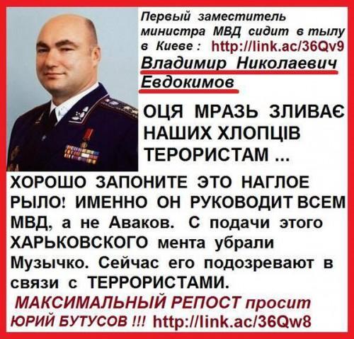 Evdokimov-Volodimir1
