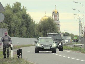 dzip-Timoshenko1