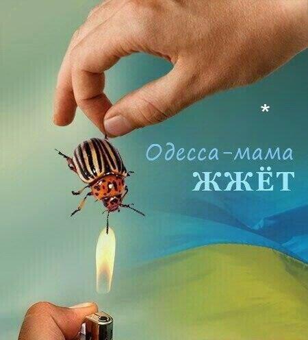 Odessa-kolorad1